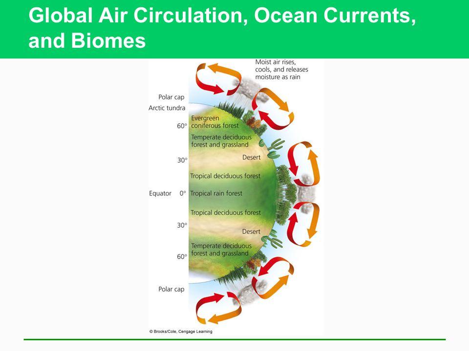 Global Air Circulation, Ocean Currents, and Biomes