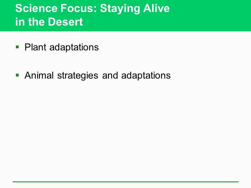 Science Focus: Staying Alive in the Desert Plant adaptations Animal strategies and adaptations