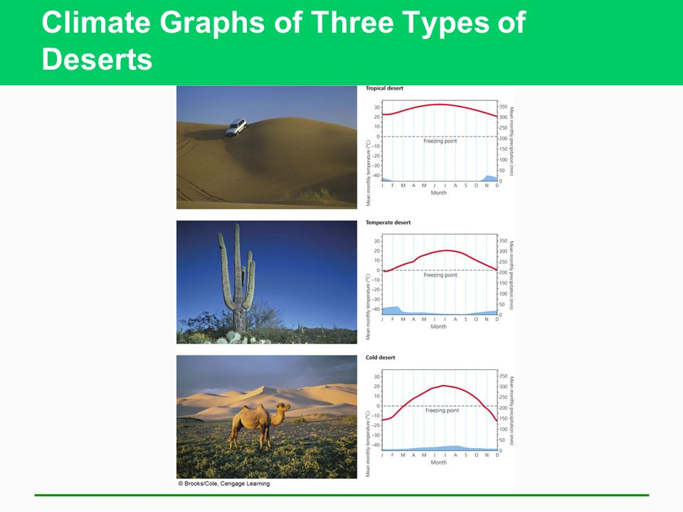 Climate Graphs of Three Types of Deserts
