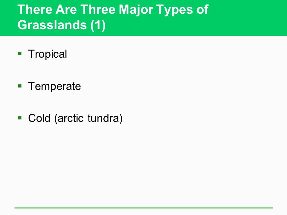 There Are Three Major Types of Grasslands (1) Tropical Temperate Cold (arctic tundra)