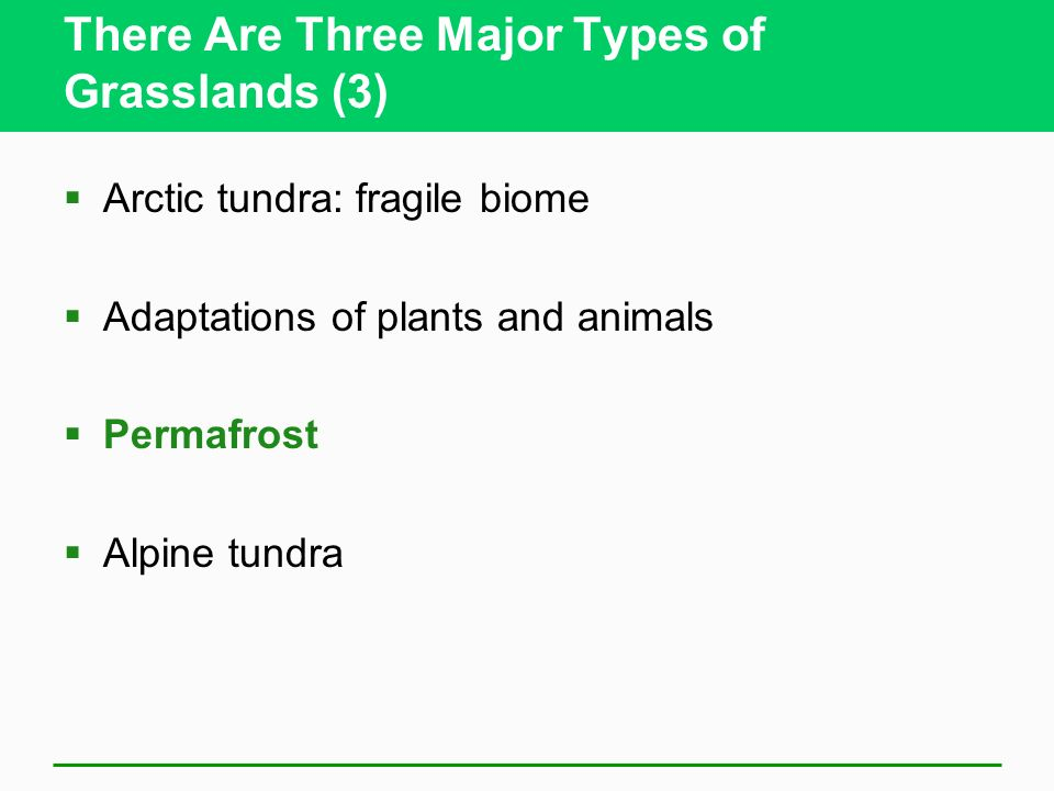 There Are Three Major Types of Grasslands (3) Arctic tundra: fragile biome Adaptations of plants and animals Permafrost Alpine tundra