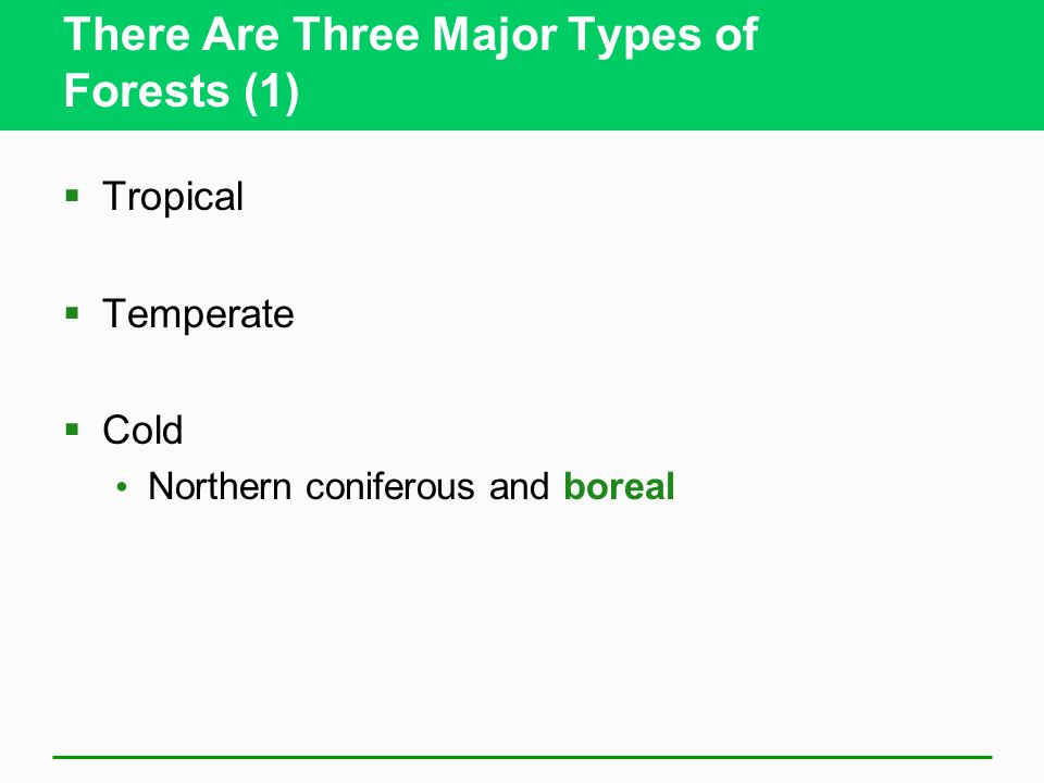 There Are Three Major Types of Forests (1) Tropical Temperate Cold Northern coniferous and boreal
