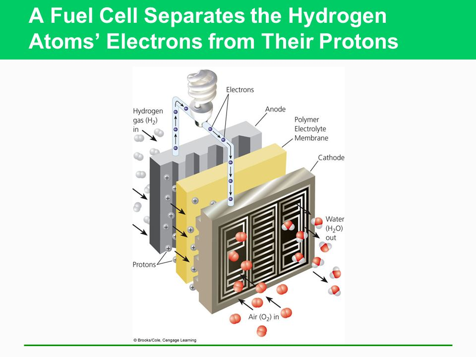 A Fuel Cell Separates the Hydrogen Atoms Electrons from Their Protons