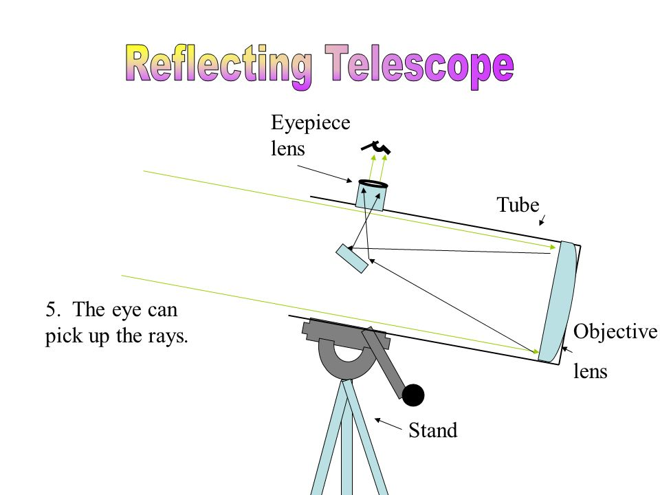 Tube Stand Eyepiece lens Objective lens Focal Point 5. The eye can pick up the rays.