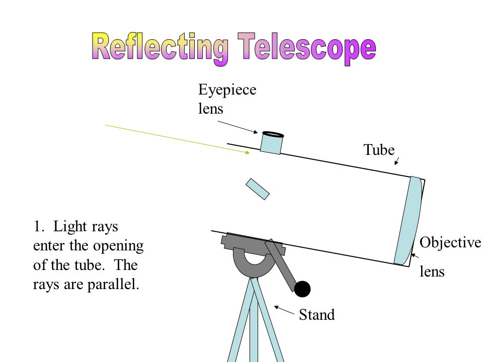 Tube Stand Eyepiece lens Objective lens Focal Point 1. Light rays enter the opening of the tube. The rays are parallel.