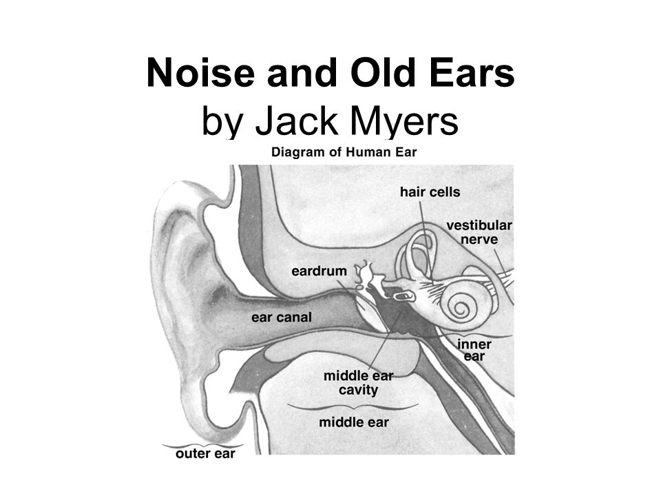 Noise and Old Ears by Jack Myers