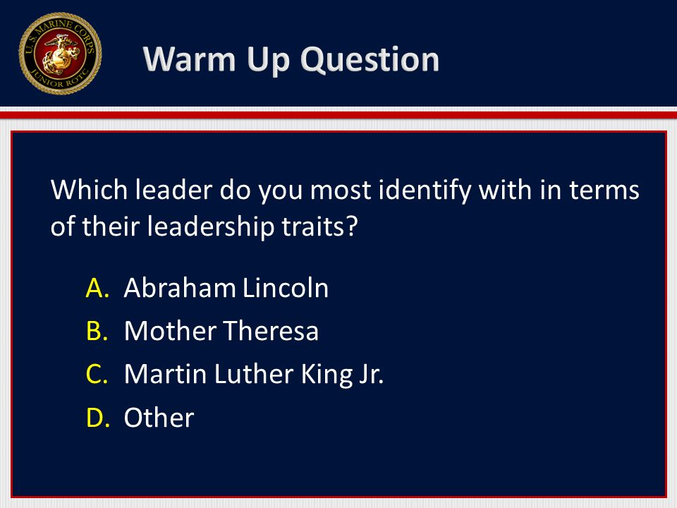 Which leader do you most identify with in terms of their leadership traits? A.Abraham Lincoln B.Mother Theresa C.Martin Luther King Jr. D.Other