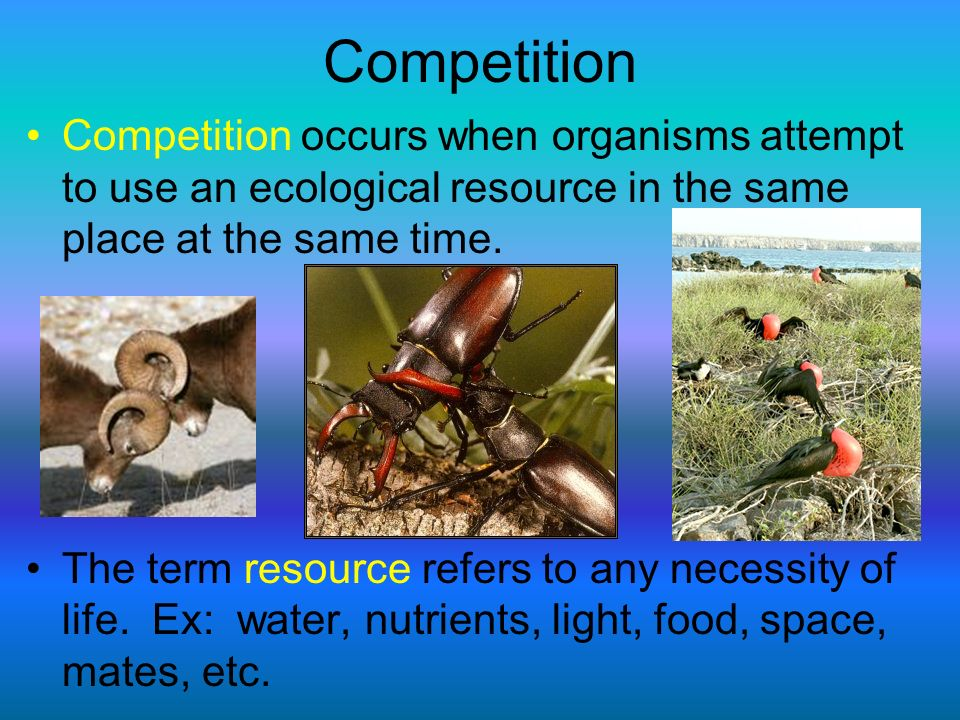 Competition Competition occurs when organisms attempt to use an ecological resource in the same place at the same time. The term resource refers to an