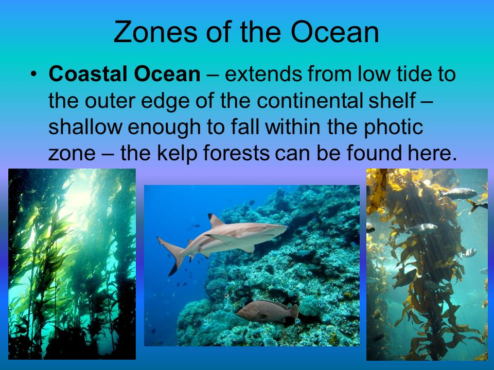 Zones of the Ocean Coastal Ocean – extends from low tide to the outer edge of the continental shelf – shallow enough to fall within the photic zone –