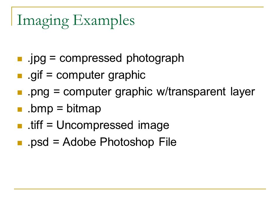 Imaging Examples.jpg = compressed photograph.gif = computer graphic.png = computer graphic w/transparent layer.bmp = bitmap.tiff = Uncompressed image.