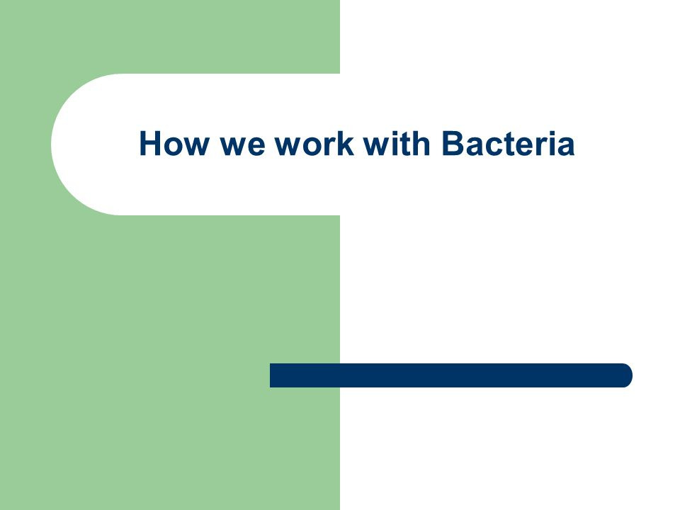 How we work with Bacteria