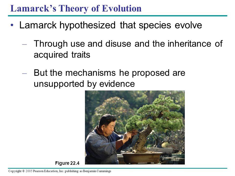 Copyright © 2005 Pearson Education, Inc. publishing as Benjamin Cummings Lamarcks Theory of Evolution Lamarck hypothesized that species evolve – Throu