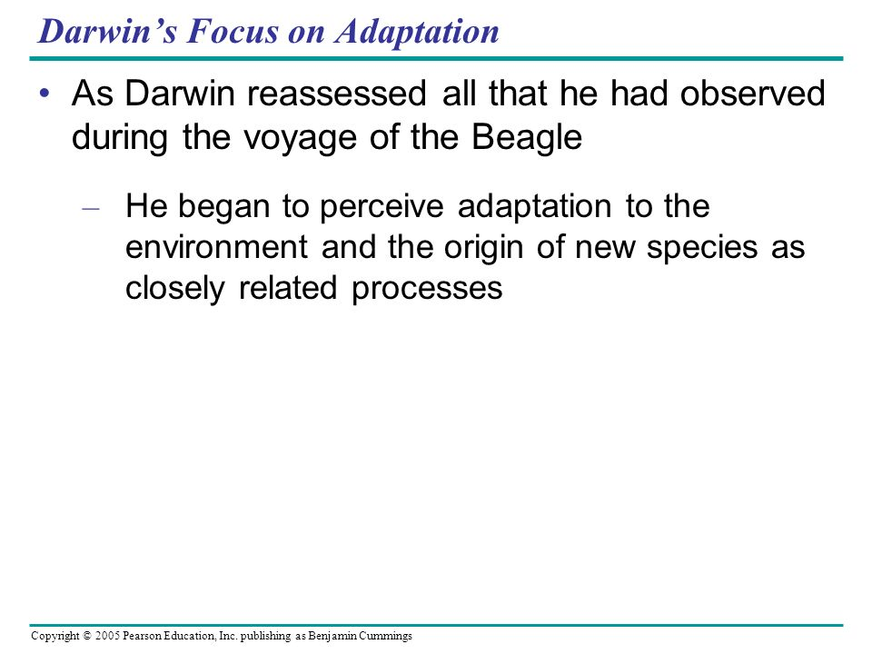 Copyright © 2005 Pearson Education, Inc. publishing as Benjamin Cummings Darwins Focus on Adaptation As Darwin reassessed all that he had observed dur