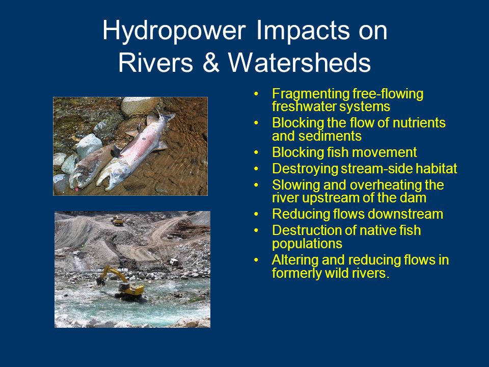 Hydropower Impacts on Rivers & Watersheds Fragmenting free-flowing freshwater systems Blocking the flow of nutrients and sediments Blocking fish movement Destroying stream-side habitat Slowing and overheating the river upstream of the dam Reducing flows downstream Destruction of native fish populations Altering and reducing flows in formerly wild rivers.