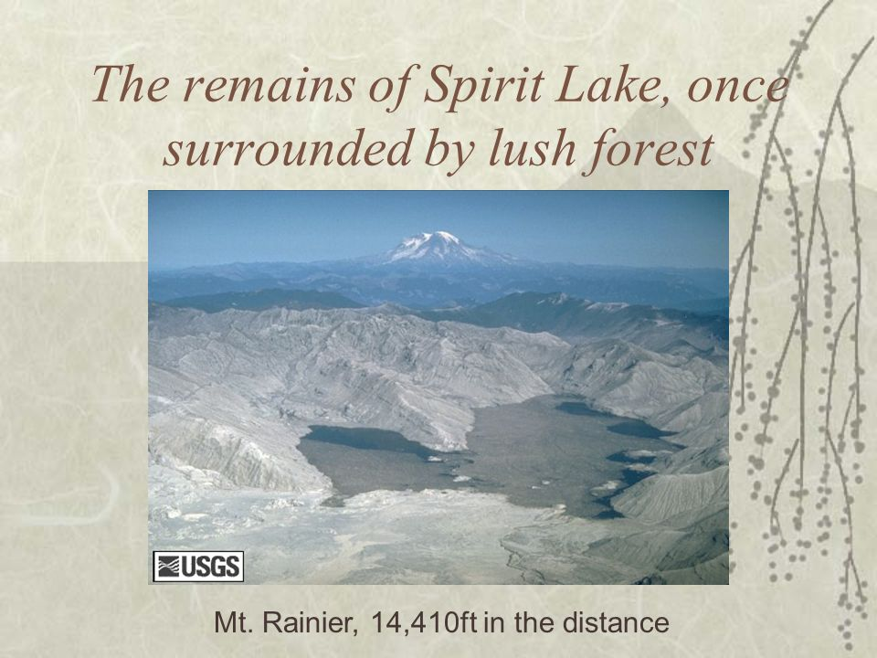 The remains of Spirit Lake, once surrounded by lush forest Mt. Rainier, 14,410ft in the distance