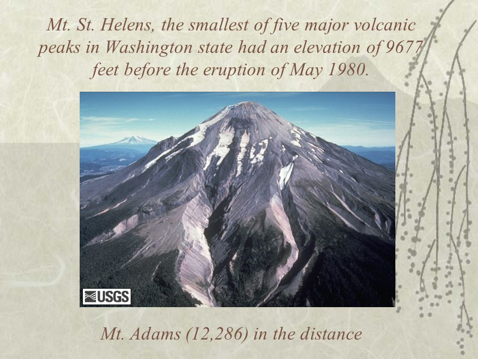 Mt. St. Helens, the smallest of five major volcanic peaks in Washington state had an elevation of 9677 feet before the eruption of May 1980. Mt. Adams