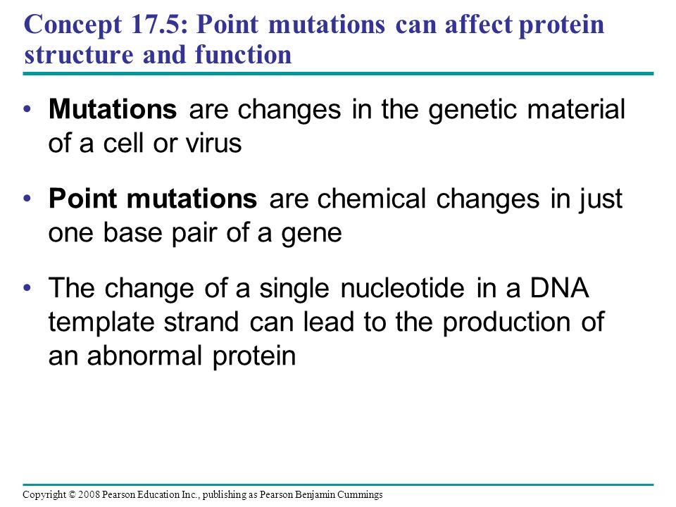 Concept 17.5: Point mutations can affect protein structure and function Mutations are changes in the genetic material of a cell or virus Point mutatio