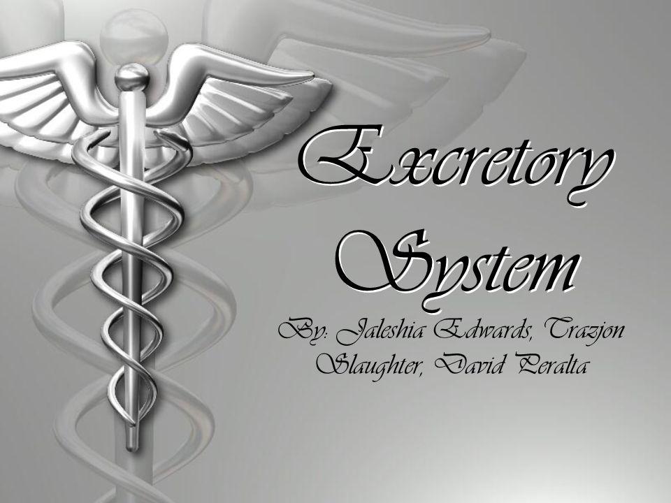Excretory System By: Jaleshia Edwards, Trazjon Slaughter, David Peralta