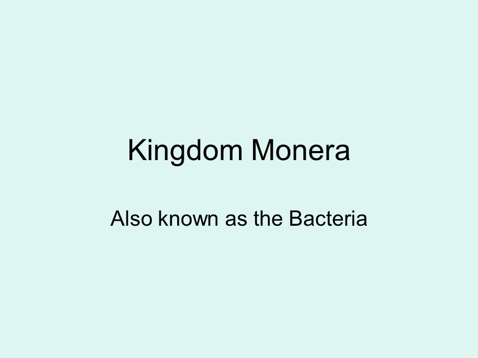 Kingdom Monera Also known as the Bacteria
