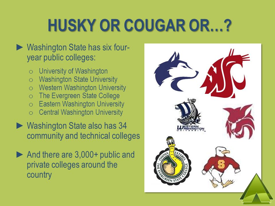 HUSKY OR COUGAR OR…? Washington State has six four- year public colleges: o University of Washington o Washington State University o Western Washingto