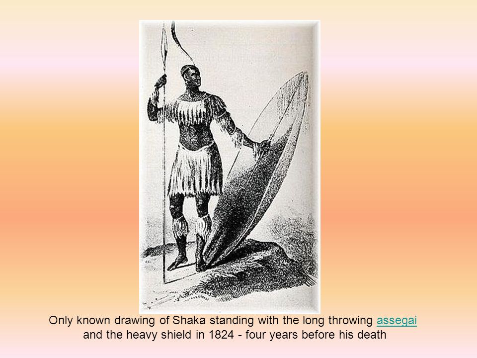 Only known drawing of Shaka standing with the long throwing assegaiassegai and the heavy shield in four years before his death