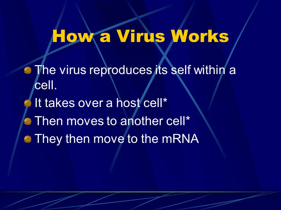 How a Virus Works The virus reproduces its self within a cell. It takes over a host cell* Then moves to another cell* They then move to the mRNA