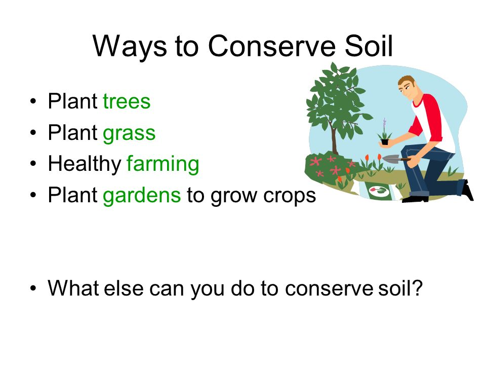 Natural Resources Made by NATURE Cannot be replaced* Must be conserved (saved)! *Some natural resources can be replanted