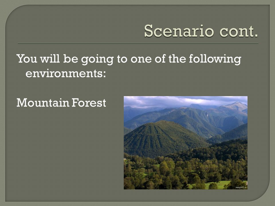 You will be going to one of the following environments: Mountain Forest