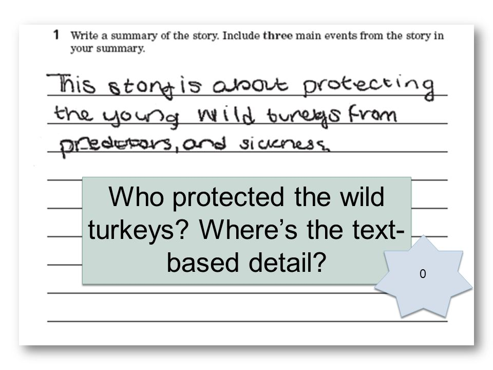 Who protected the wild turkeys Wheres the text- based detail 0 0