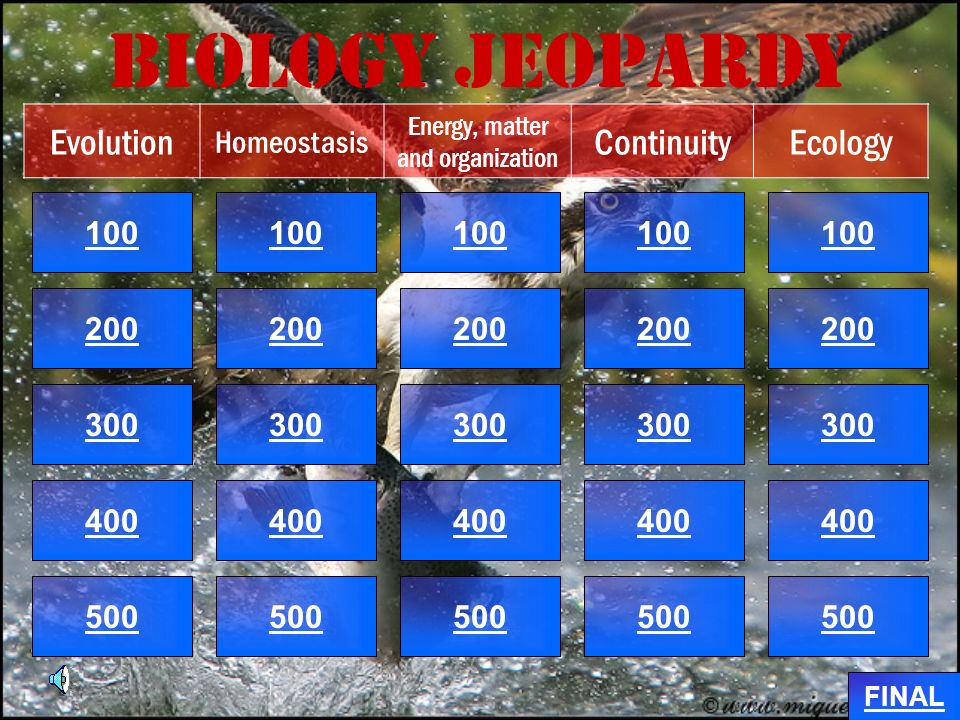 Biology Jeopardy 100 200 100 200 300 400 500 300 400 500 100 200 300 400 500 100 200 300 400 500 100 200 300 400 500 Evolution Homeostasis Energy, matter and organization ContinuityEcology FINAL