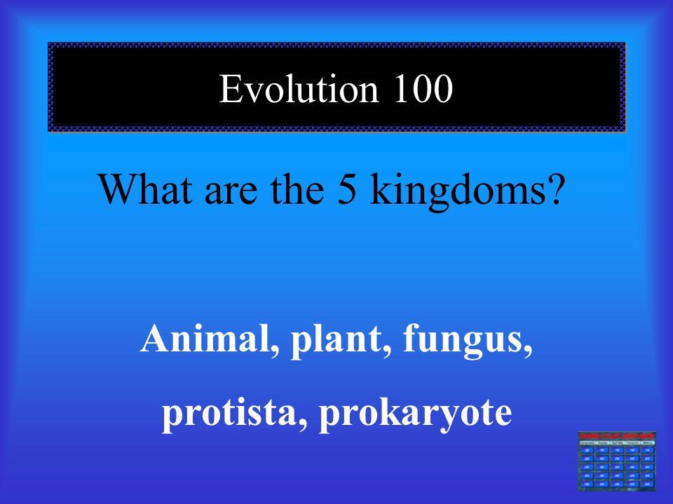 Evolution 100 What are the 5 kingdoms? Animal, plant, fungus, protista, prokaryote