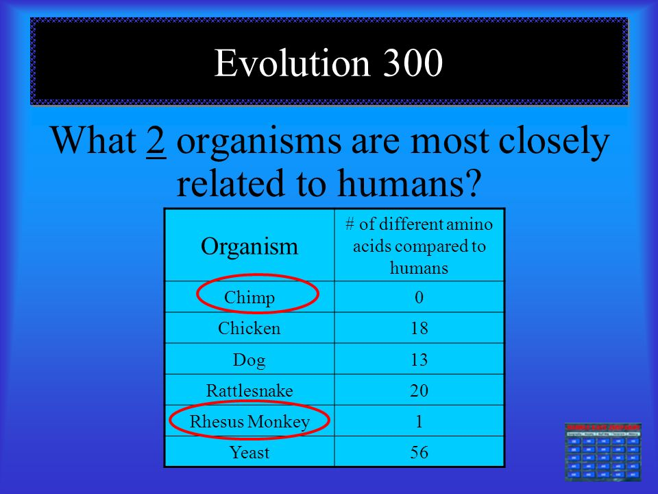 E.M & O 300 What process results in oxygen production? Photosynthesis