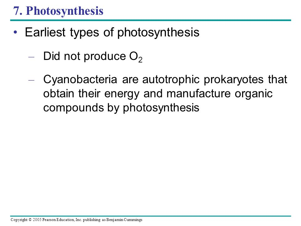 Copyright © 2005 Pearson Education, Inc. publishing as Benjamin Cummings 7. Photosynthesis Earliest types of photosynthesis – Did not produce O 2 – Cy