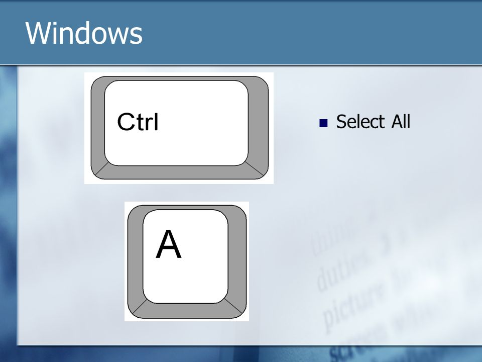 Select All Windows