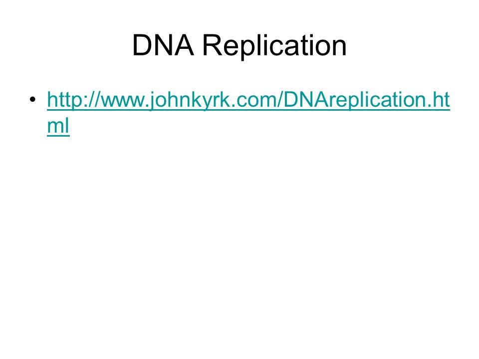 DNA Replication http://www.johnkyrk.com/DNAreplication.ht mlhttp://www.johnkyrk.com/DNAreplication.ht ml