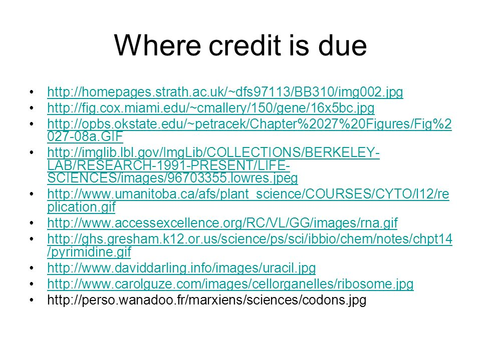 Where credit is due http://homepages.strath.ac.uk/~dfs97113/BB310/img002.jpg http://fig.cox.miami.edu/~cmallery/150/gene/16x5bc.jpg http://opbs.okstat