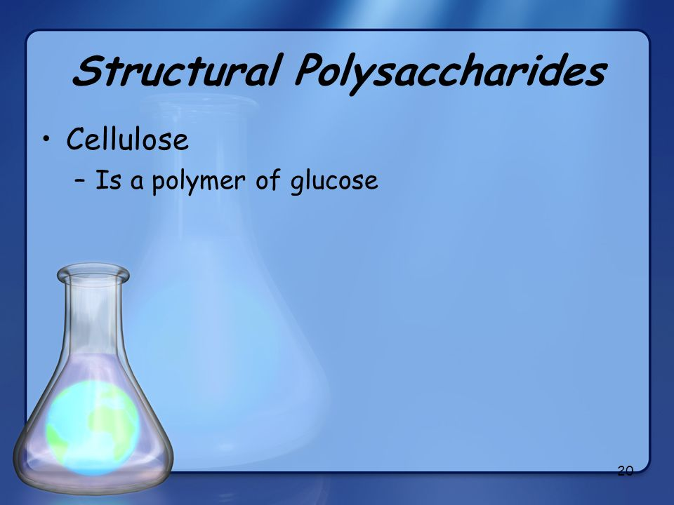20 Structural Polysaccharides Cellulose –Is a polymer of glucose