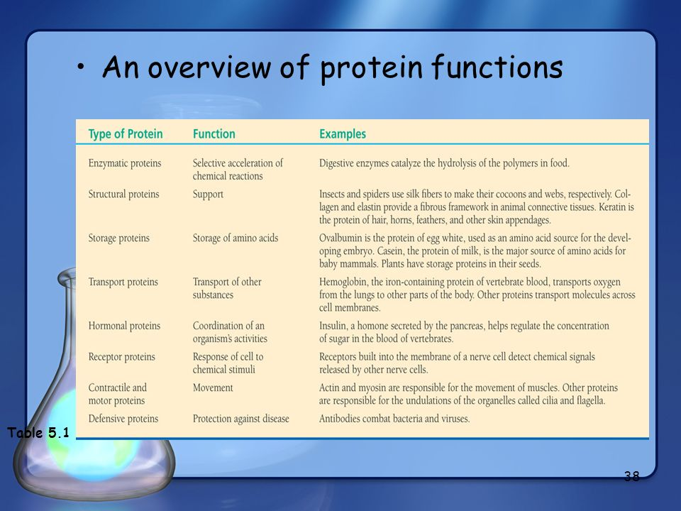 38 An overview of protein functions Table 5.1