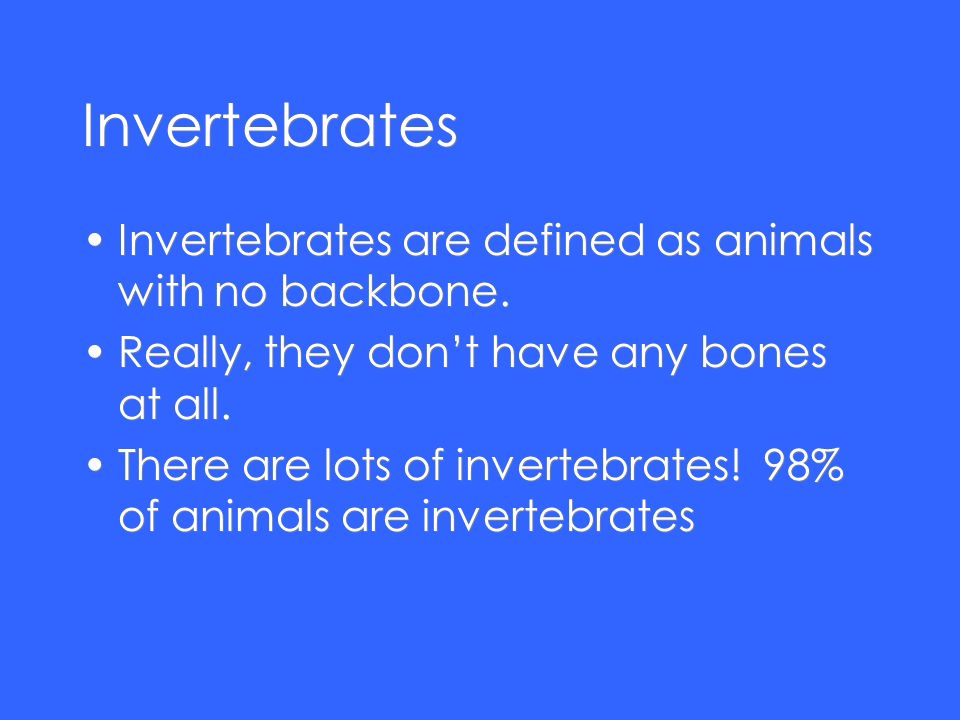 Invertebrates Invertebrates are defined as animals with no backbone. Really, they dont have any bones at all. There are lots of invertebrates! 98% of