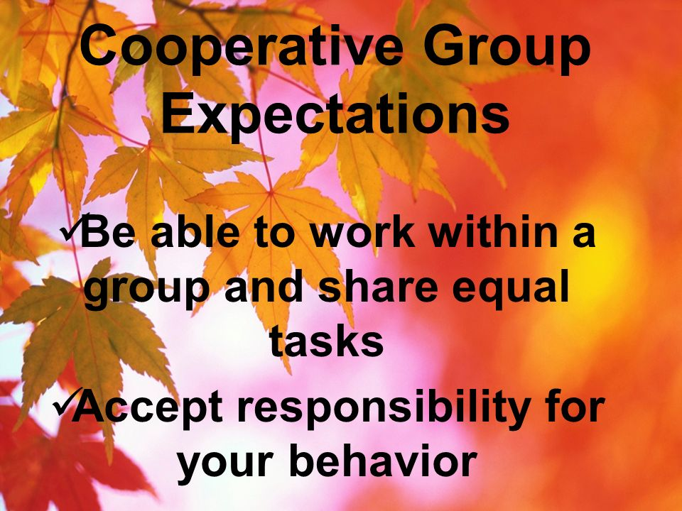 Cooperative Group Expectations Be able to work within a group and share equal tasks Accept responsibility for your behavior
