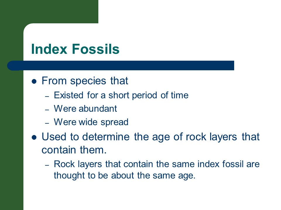 Index Fossils From species that – Existed for a short period of time – Were abundant – Were wide spread Used to determine the age of rock layers that