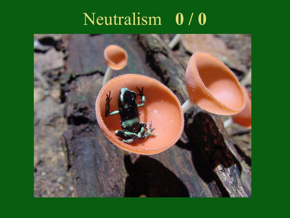 Neutralism 0 / 0