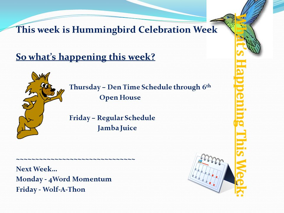 This week is Hummingbird Celebration Week So whats happening this week.