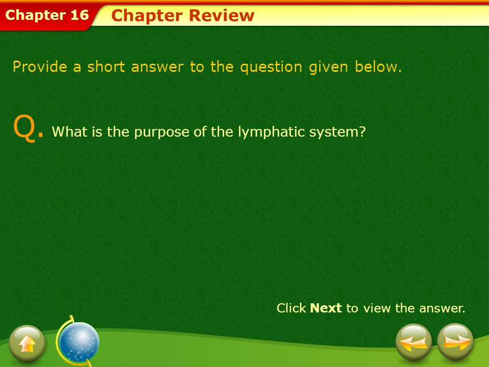 Chapter 16 Chapter Review Provide a short answer to the question given below. Q. What is the purpose of the lymphatic system? Click Next to view the a