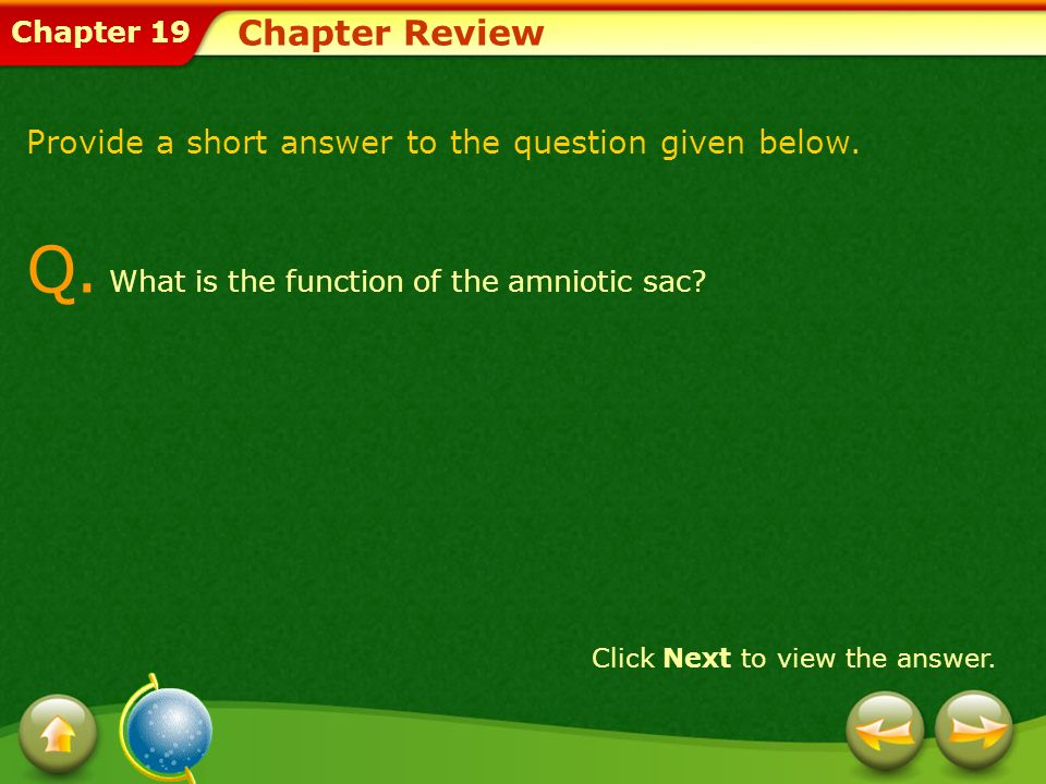 Chapter 19 Chapter Review Provide a short answer to the question given below. Q. What is the function of the amniotic sac? Click Next to view the answ