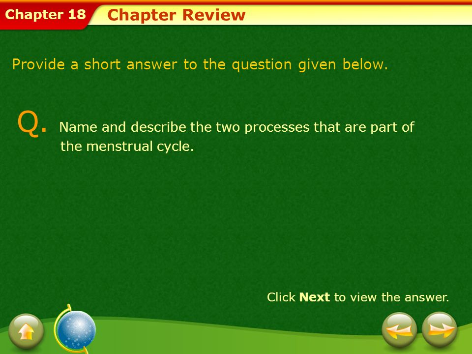 Chapter 18 Chapter Review Provide a short answer to the question given below. Click Next to view the answer. Q. Name and describe the two processes th