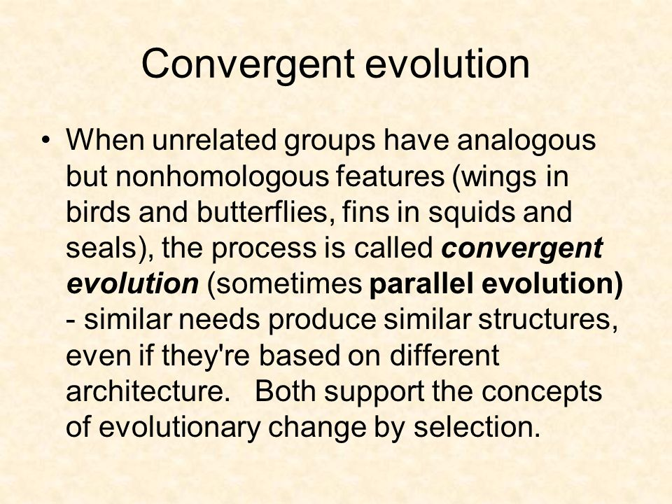 Convergent evolution When unrelated groups have analogous but nonhomologous features (wings in birds and butterflies, fins in squids and seals), the p