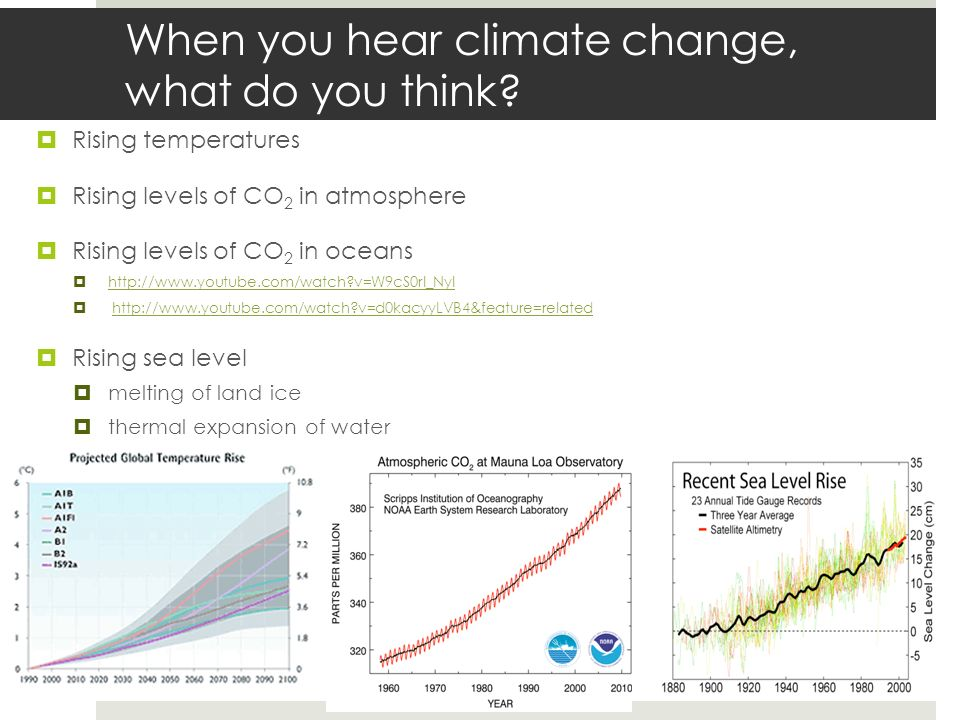 When you hear climate change, what do you think? Rising temperatures Rising levels of CO 2 in atmosphere Rising levels of CO 2 in oceans http://www.yo