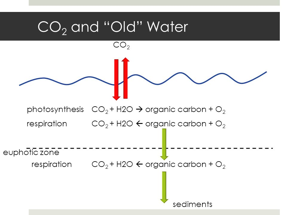 CO 2 and Old Water CO 2 CO 2 + H2O organic carbon + O 2 euphotic zone CO 2 + H2O organic carbon + O 2 sediments photosynthesis respiration