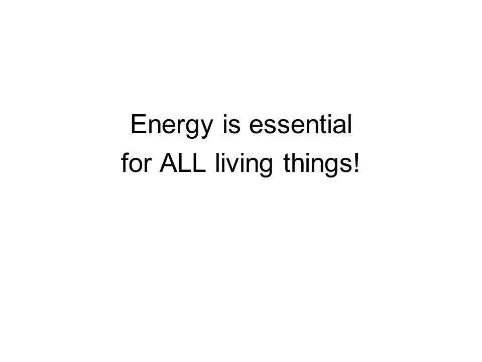 Energy is essential for ALL living things!